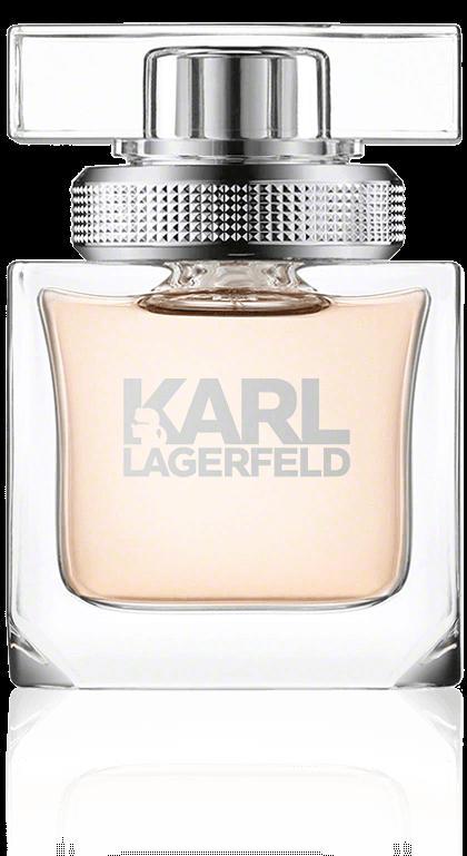 Отзыв на Лагерфельд Карл для Женщины парфюмированная вода спрей из Интернет-Магазина Easycosmetic