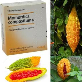 Отзыв на Моморика из Интернет-Магазина Best-arznei
