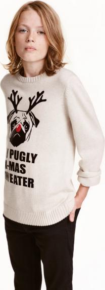 Отзыв на Пуловер с принтом из Интернет-Магазина H&M